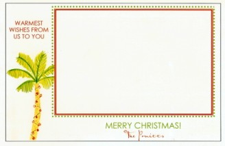 Christmas Palm Lime - NEW